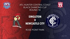 2019 AFL Hunter Central Coast Round 18 - Cup - Singleton Roosters v Newcastle City  Slate Image