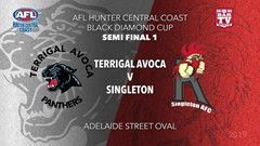 AFL HCC SEMI FINAL 1 - Cup - Terrigal Avoca Panthers v Singleton Roosters Slate Image