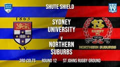 Shute Shield Round 12 - 3rd Colts - Sydney University v Northern Suburbs Slate Image