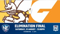 NEAFL ELIMINATION FINAL - Aspley Hornets v GWS Giants Slate Image
